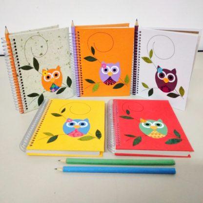 Anotação M Coruja para as suas anotações diárias. Não só para as listas do mercado, como também para os lembretes do seu cotidiano.